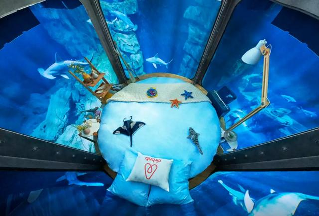 Airbnb dará uma noite dentro de um aquário cercado de tubarões para 3 pessoas