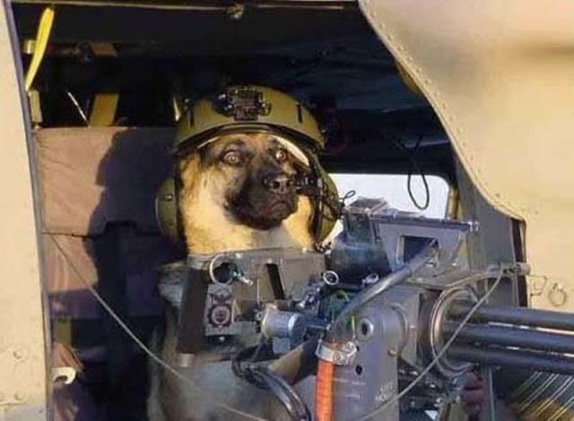 militares-se-divertindo-em-servico19